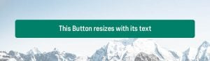 """A green button with text that says """"This button resizes with its text"""" but the button's width stretches past the size of the text"""