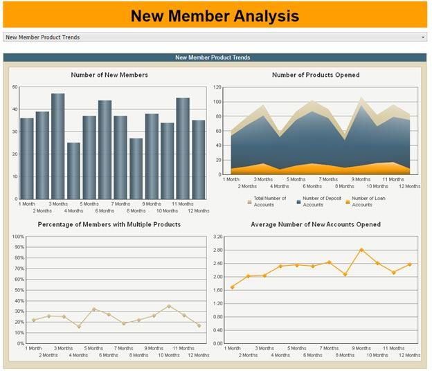 New Member Analysis Report