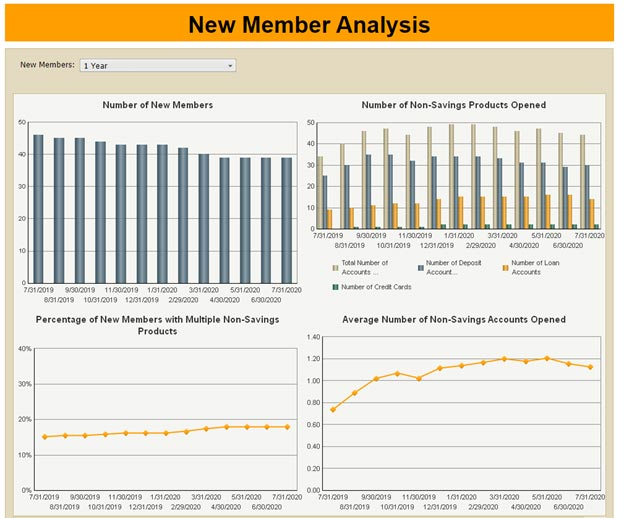 2nd Example New Member Analysis Report
